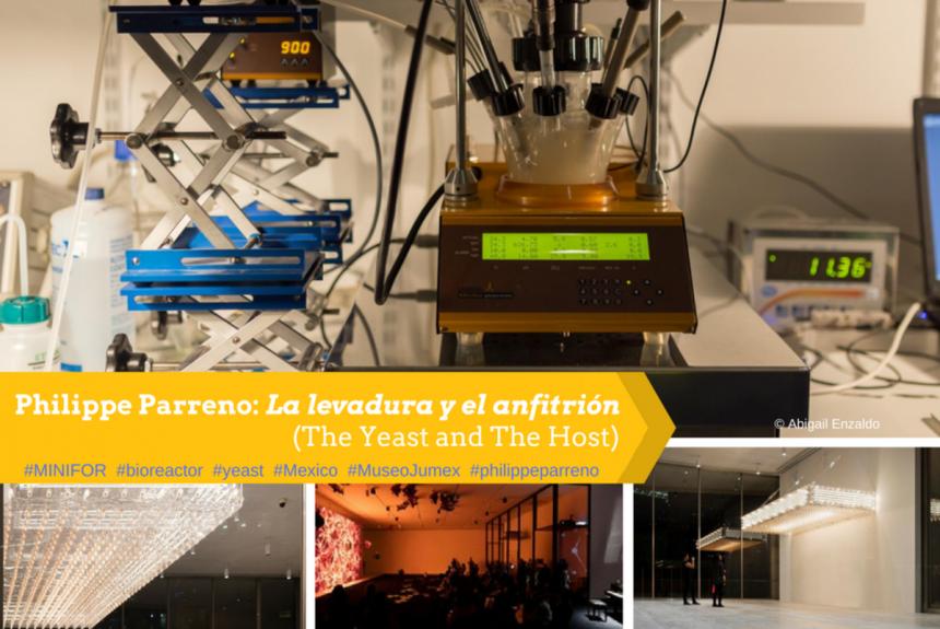 MINIFOR Bioreactor